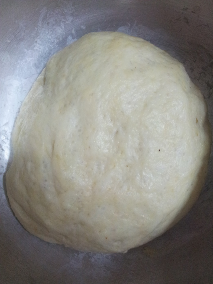 Fermented Pizza Dough